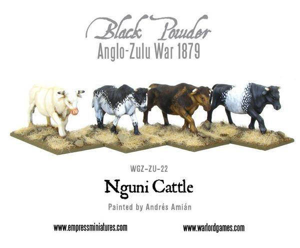 WGZ-ZU-22-Nguni-cattle-a_grande